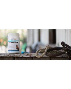 PAW Cosequin® Equine Powder